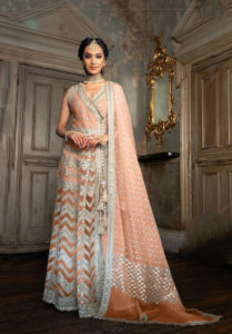 sobia-nazir-orange-color-heavy-butterfly-net-with-embroidery-work-suit
