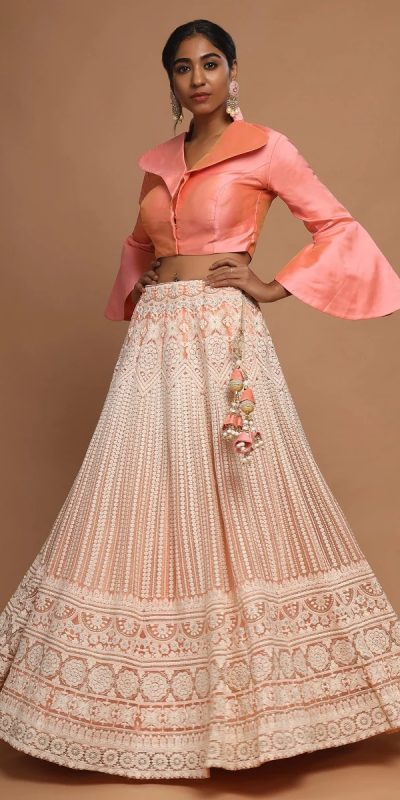 divine-peach-color-lucknowi-work-on-soft-net-lehenga-choli