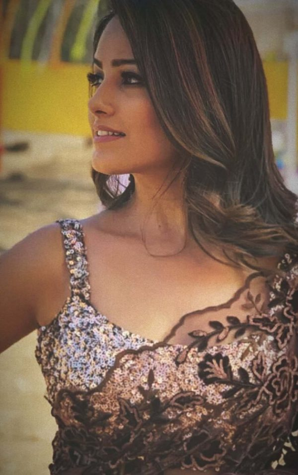 heavenly-anita-hassanandani-in-brown-heavy-net-saree-with-sequence-blouse